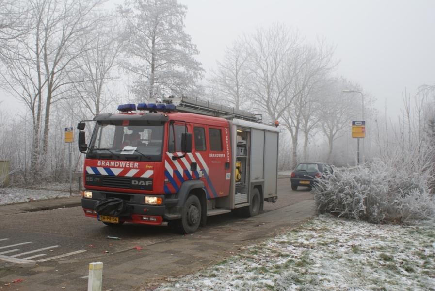 Brandweer haalt dode kat uit het ijs