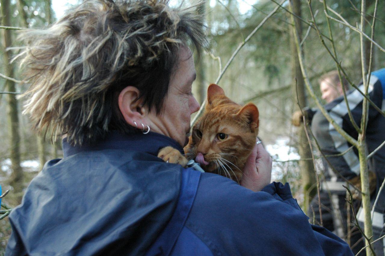 Kat na drie dagen uit boom gered