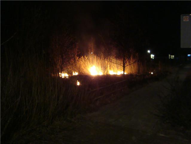 Natuurgebied in brand gestoken