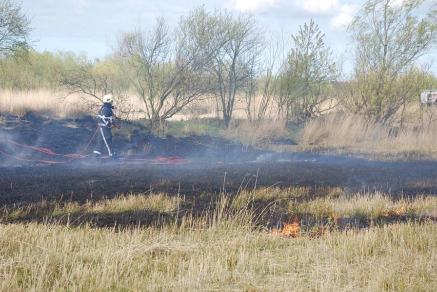 Grote brand treft natuurgebied (video)
