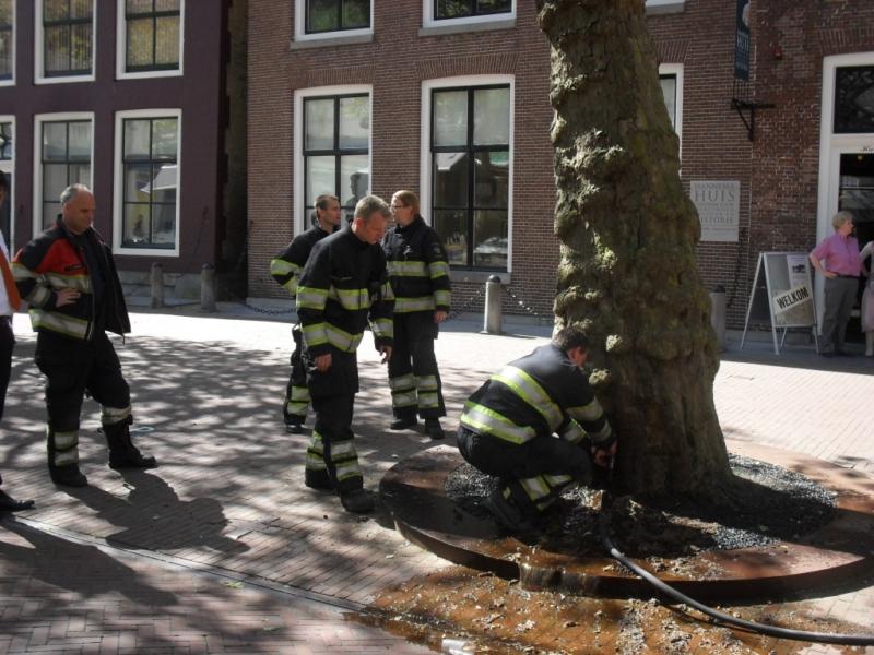 Brandweer blust rokende boom