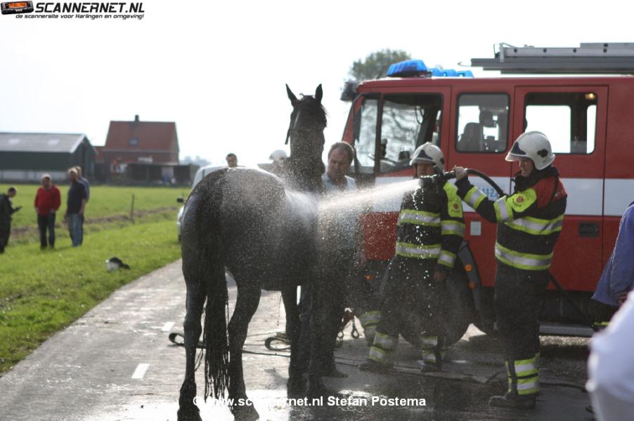 Paard en wagen te water