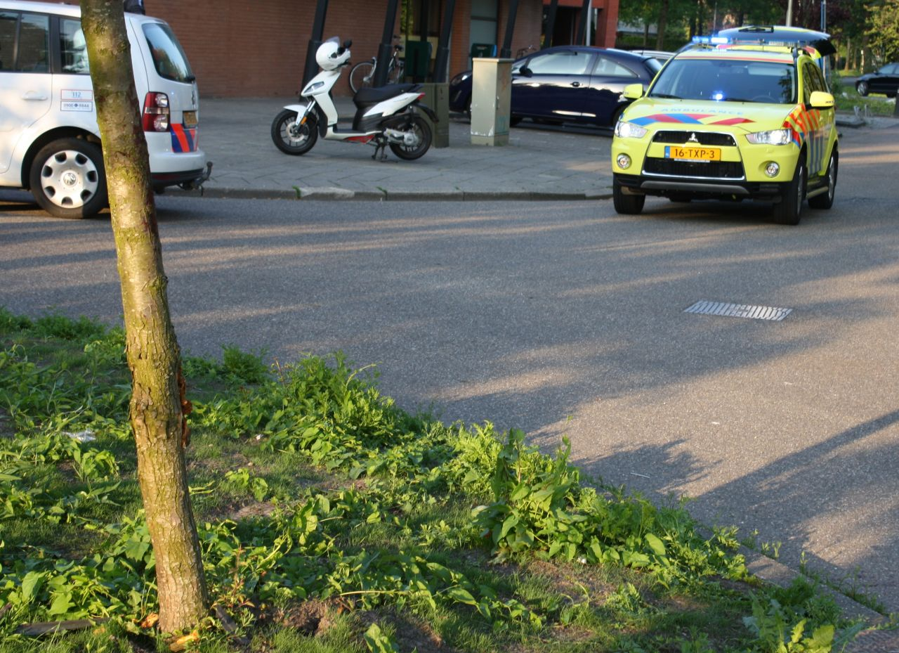 Alcomobilist botst tegen boompje