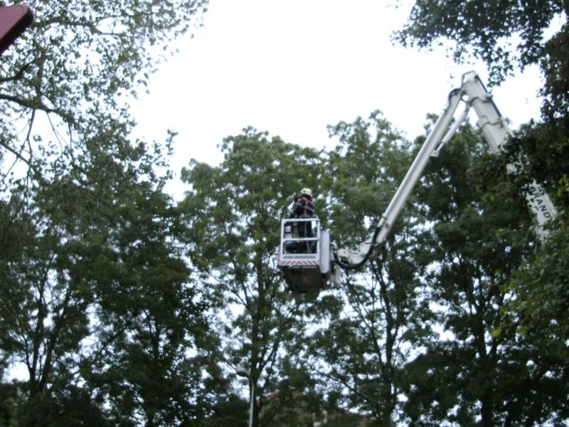 Brandweer uitruk voor losse tak