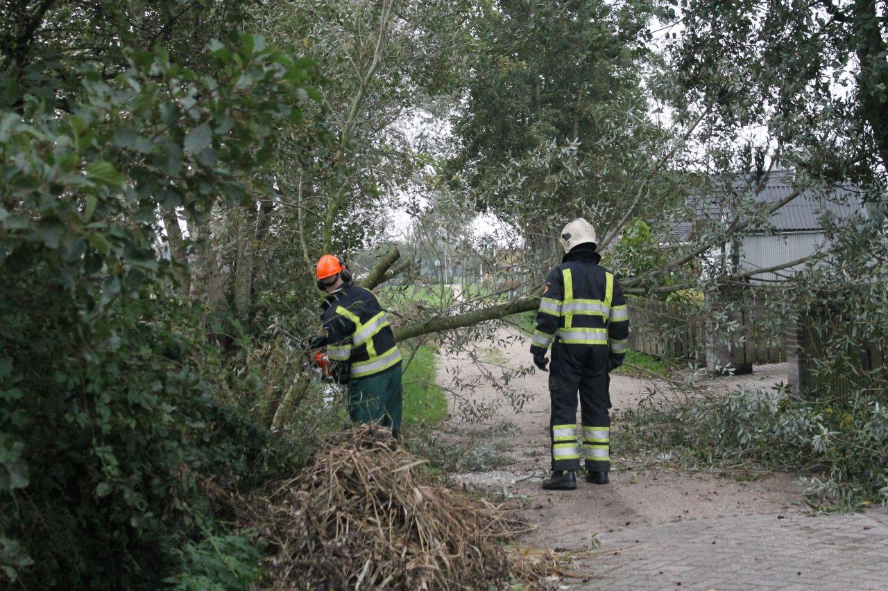 Brandweer verwijderd boom