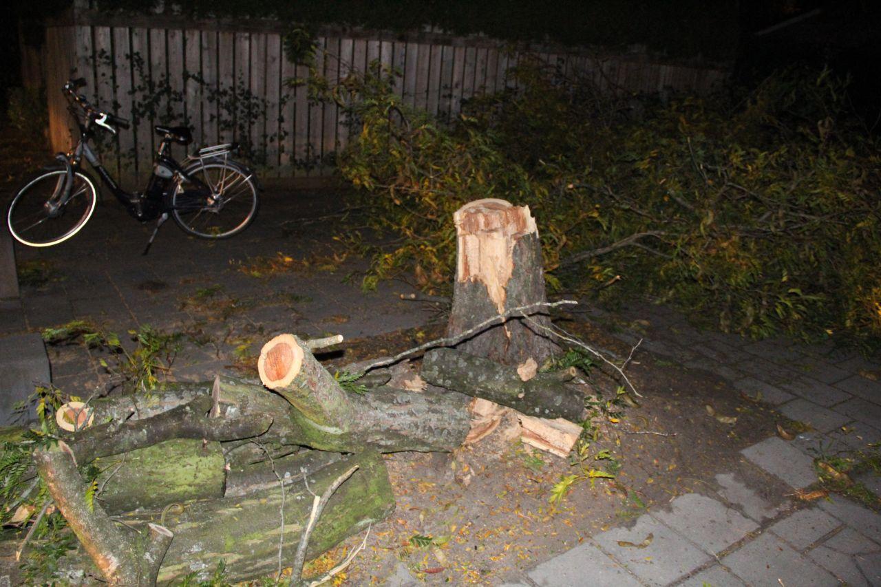 Beschadigde boom omgetrokken door de brandweer