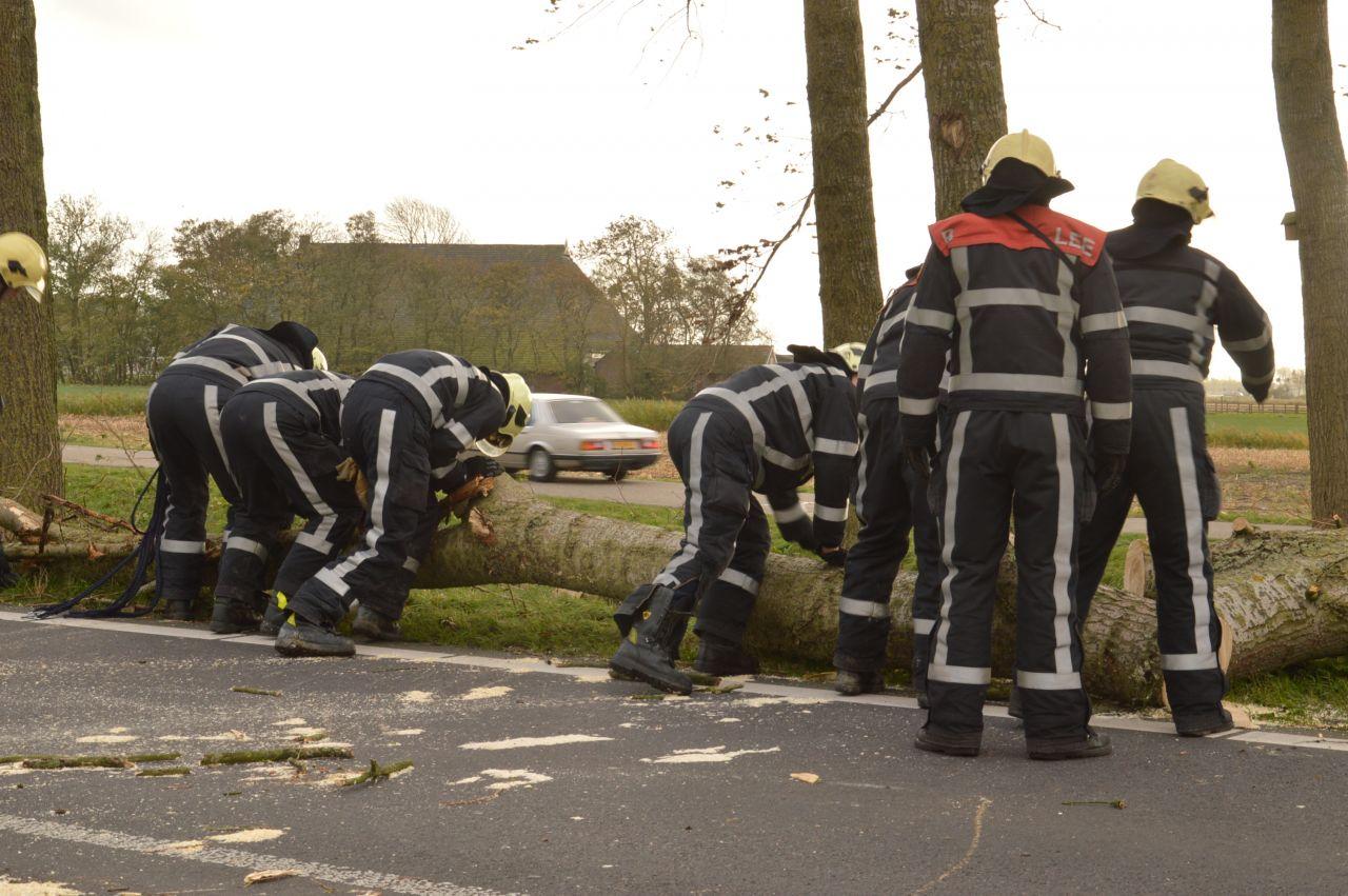 Bomen op rijdende auto's gevallen
