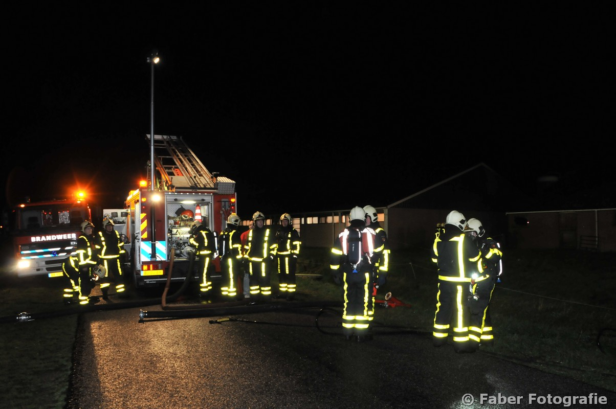 340 kalveren omgekomen bij brand in stal