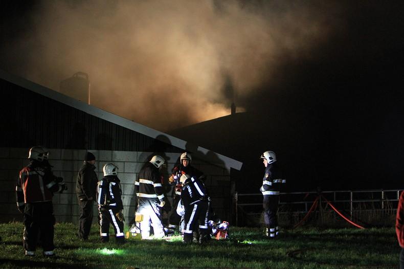 Boer zwaargewond en dieren dood bij grote stalbrand
