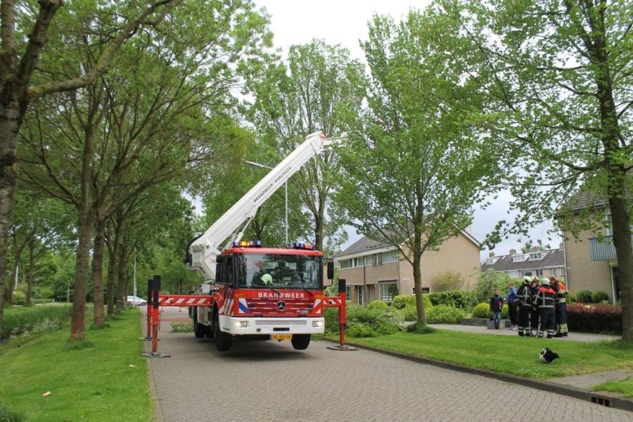 Brandweer verwijderd loshangende takken