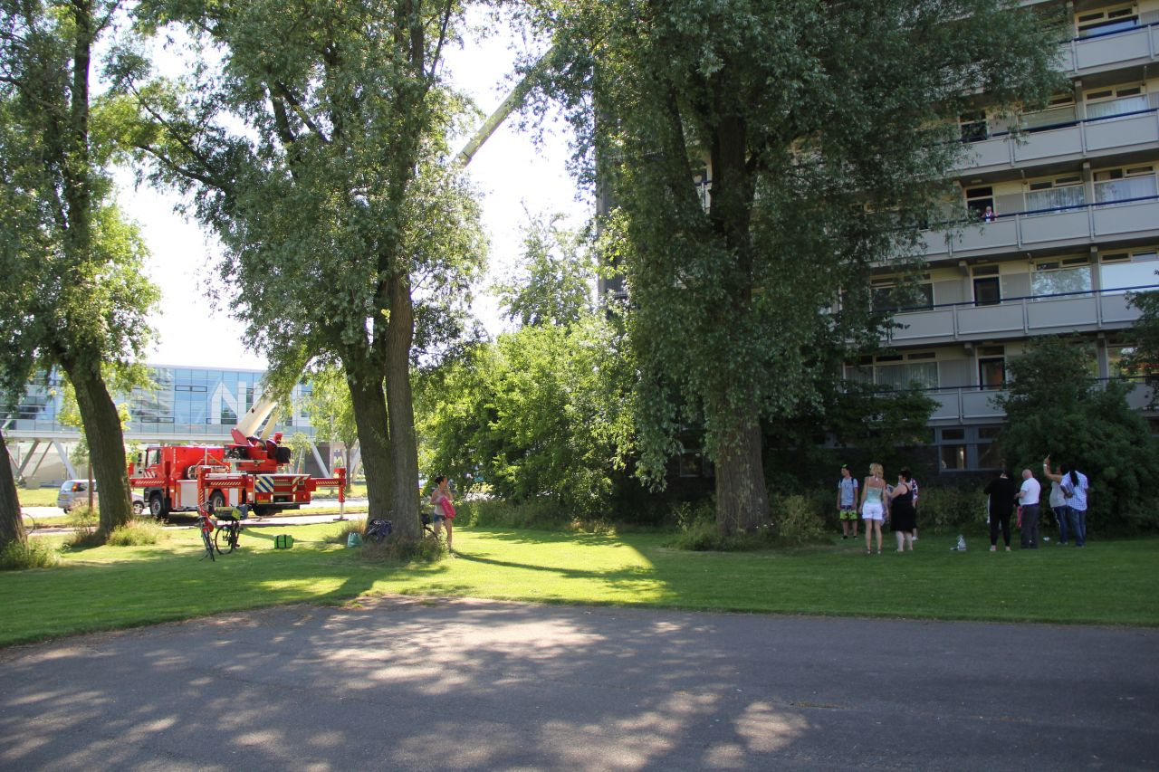 Brandweer ingezet voor jonge ransuil