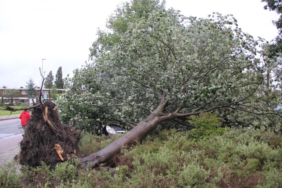 Brandweer druk met stormschades in Leeuwarden