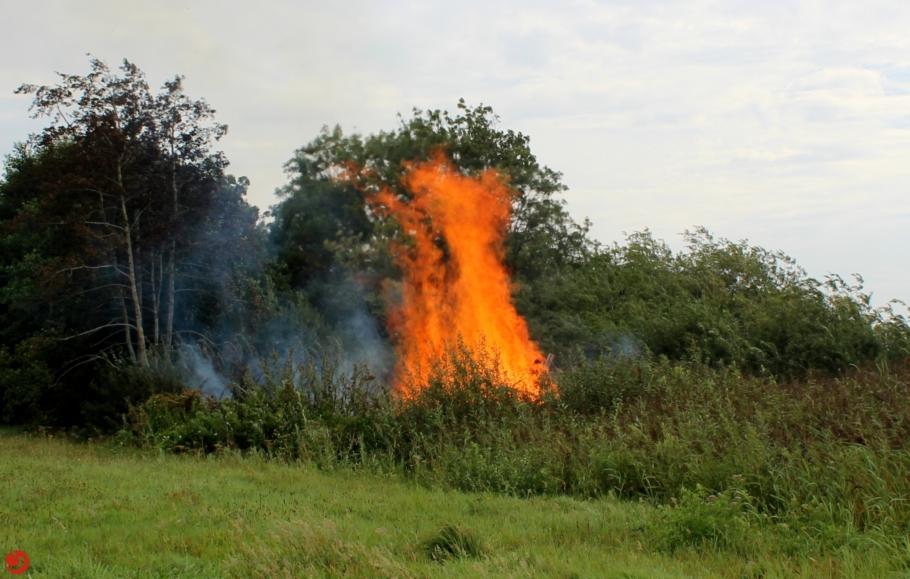 Brandweer in actie voor buitenbrand