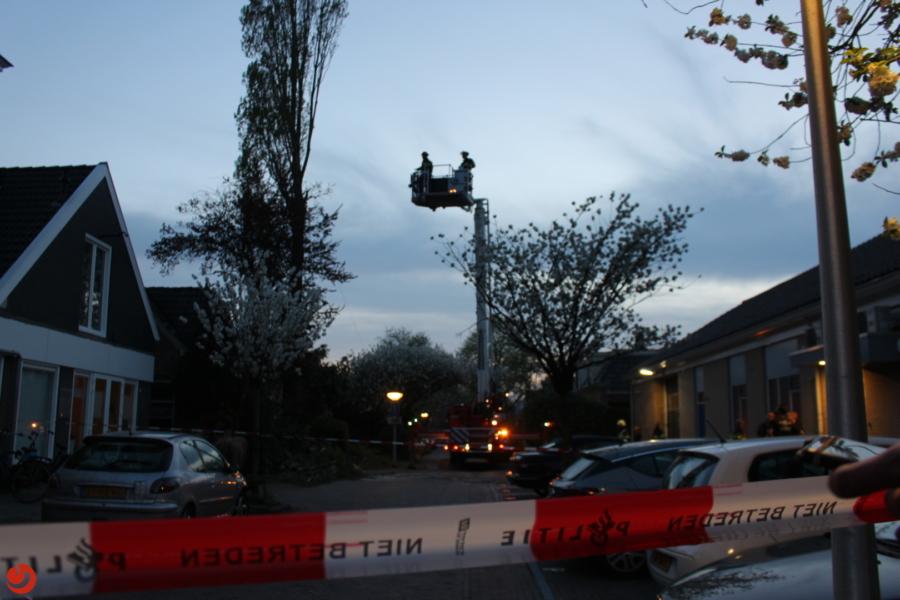 Langdurige brandweerinzet voor boom
