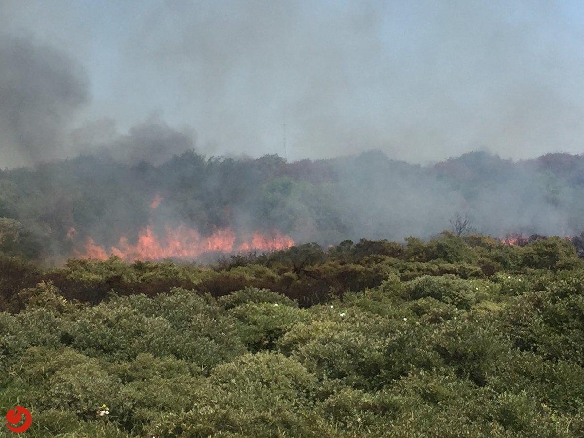 Grote duinbrand op Schiermonnikoog