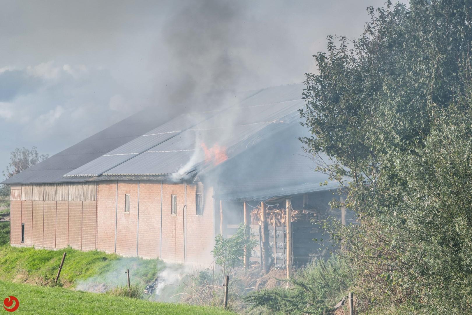 Forse brand in veestal van kaasboerderij