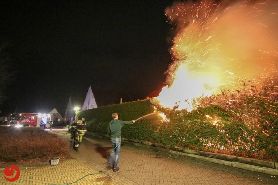 Coniferen in brand naast basisschool