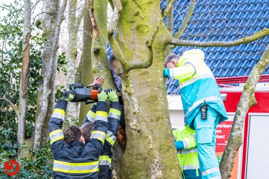 Brandweer bevrijdt jongetje uit boom