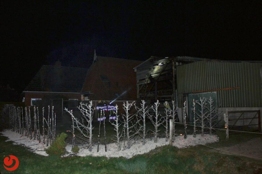 Coniferenhaag naast schuur door brand verloren