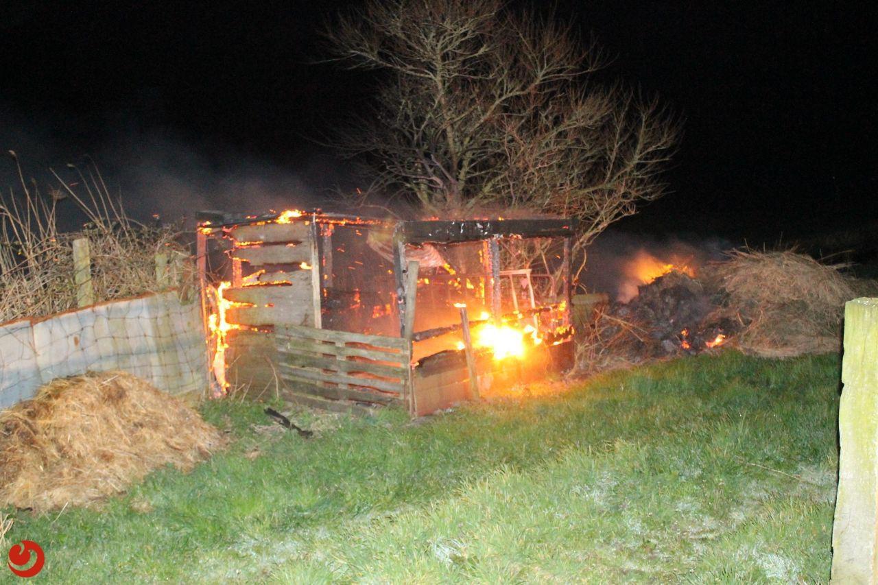 Brand in hok met stro snel onder controle