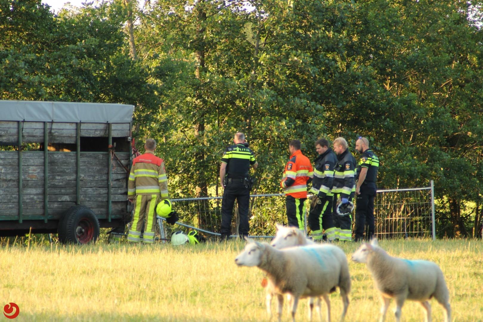 Boer zwaargewond in weiland