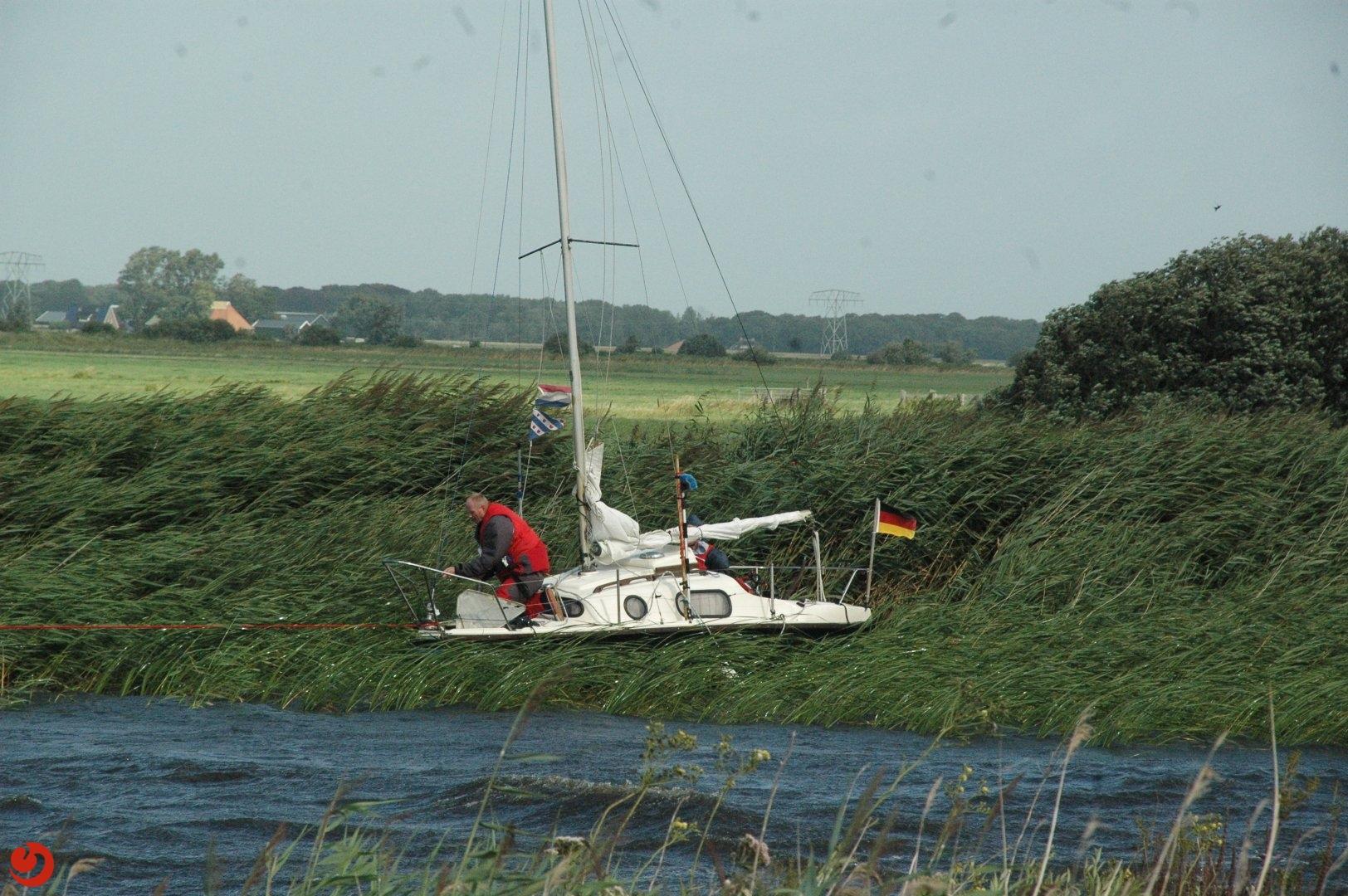 Zeilboot vast in riet