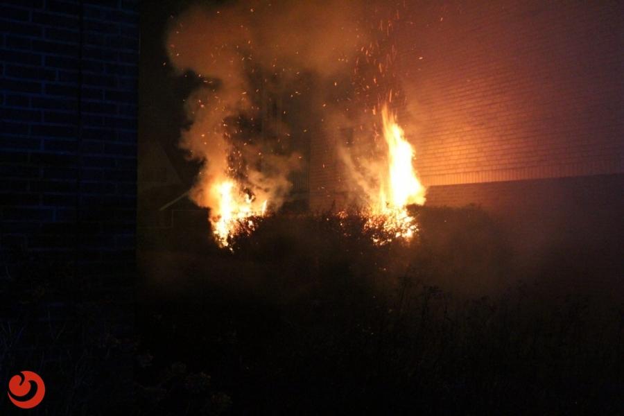 Opnieuw brandende coniferen in Drachten