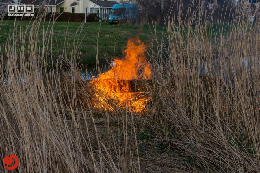 Riet in brand