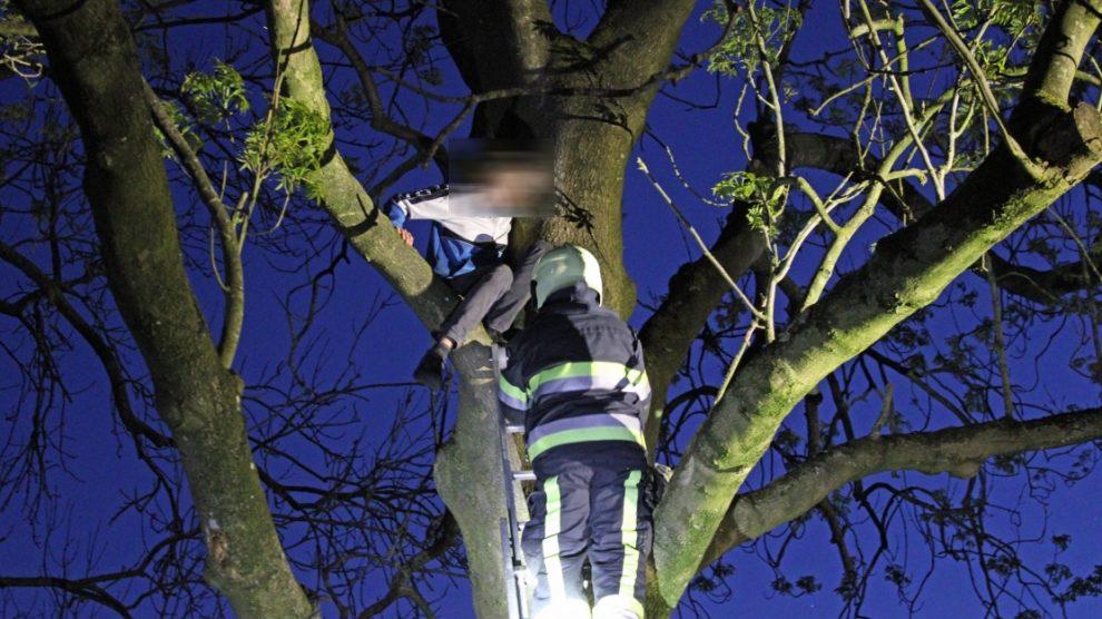 Brandweer helpt jongen uit boom