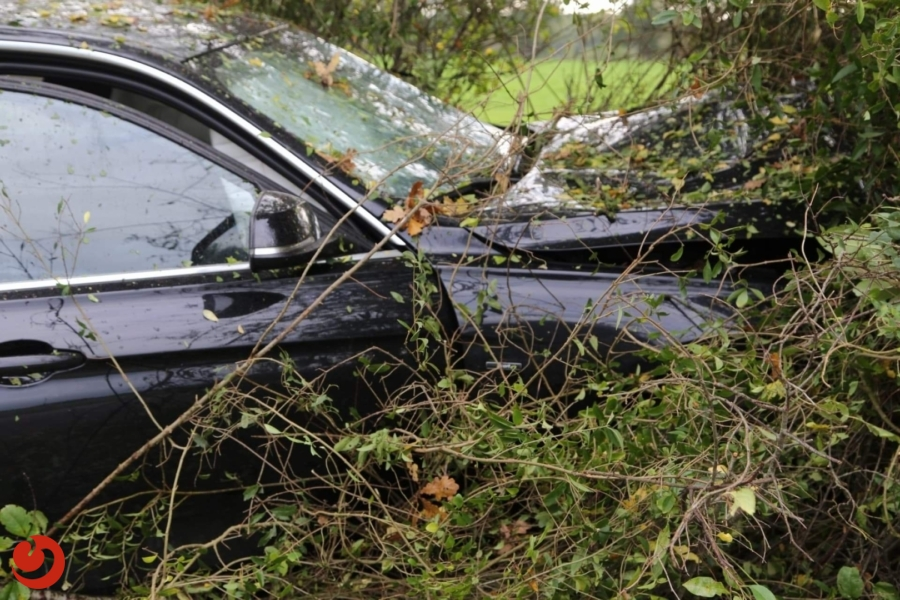Auto botst tegen boom; geen letsel