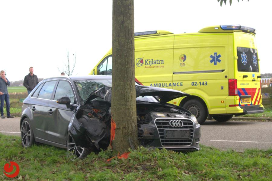 Bestuurder gewond na botsing tegen boom