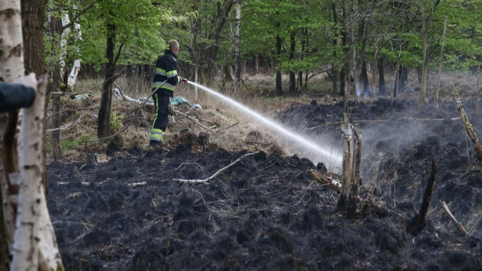Veenbrand in bos snel onder controle