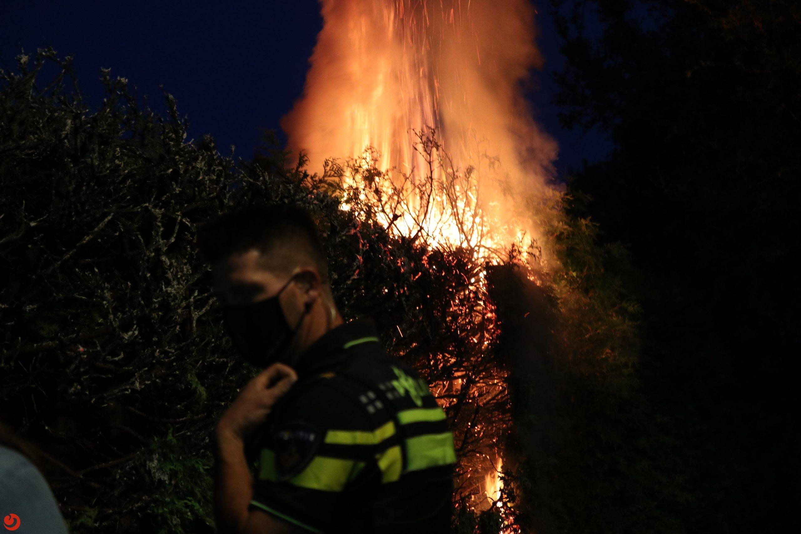 Buurtbewoonster ontdekt coniferen brand in steeg Drachten